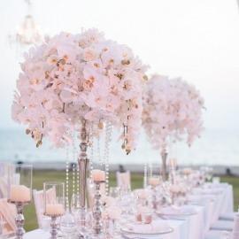 Phuket Wedding & Event Organiser & Planner, Phuket & Samui Thailand